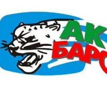 Хоккеисты «Ак Барса» поедут на Европейский юношеский фестиваль
