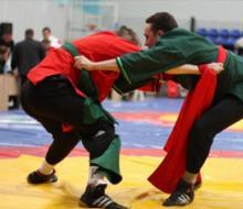 Казань принимает борцов
