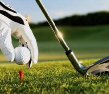 Гоу, гольф!