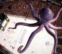 В Детройте хоккеистов подбадривают осьминогами