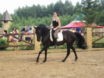 Конный спортивно-оздоровительный комплекс «Рамаевский»